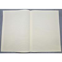 Notenpapier - DIN A3 hoch 44 Systeme