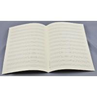 Notenpapier - DIN A4 hoch 12 Systeme wei